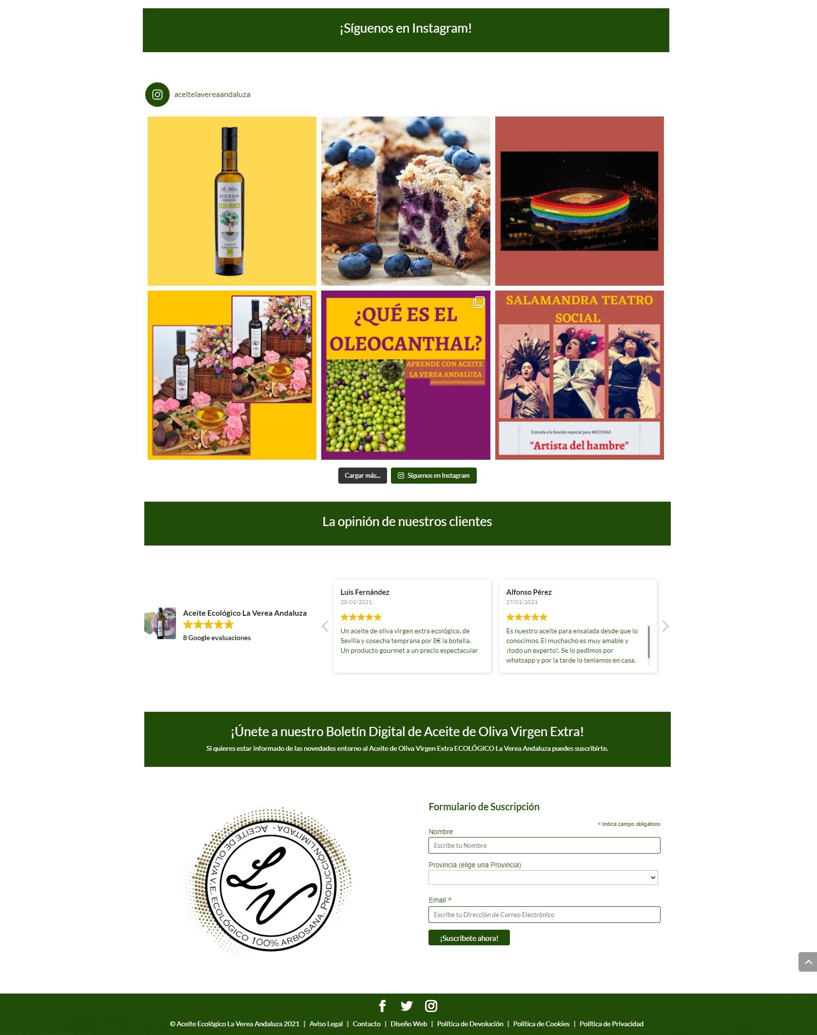 Diseño Web   Marketing Online